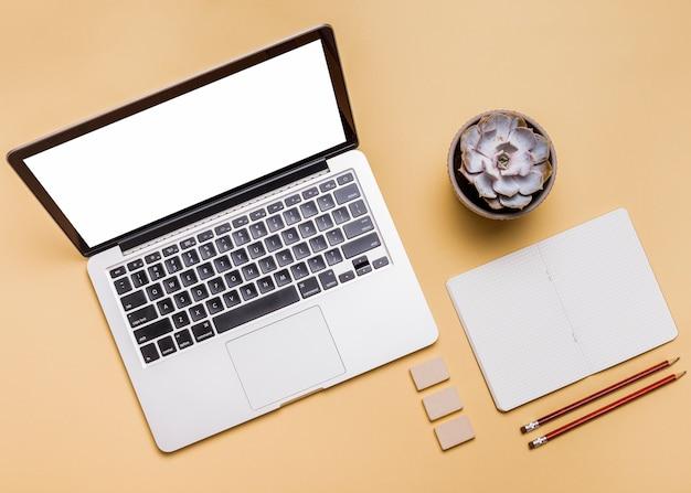 Vista de alto ângulo do laptop; artigos de papelaria e planta suculenta no fundo brilhante