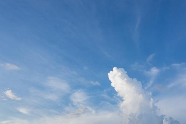 Vista de ângulo baixo de nuvens no céu
