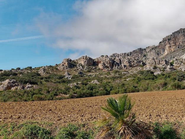 Vista de arbustos e vegetação na base do el torcal de antequera