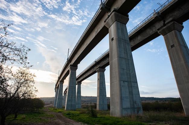 Vista de baixo ângulo de uma ponte de concreto cercada por vegetação sob a luz do sol