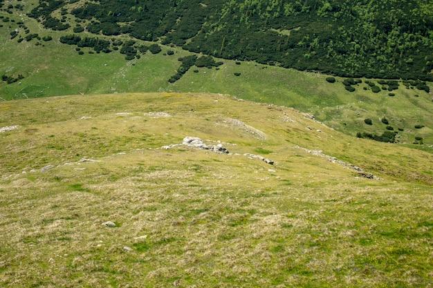 Vista, de, bucegi, montanhas, romania