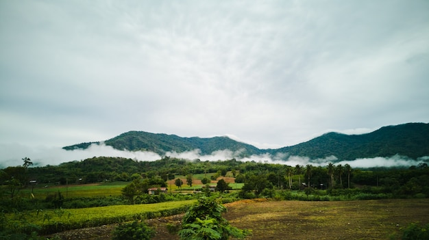Vista de campo verde contra montanha e céu azul com nuvem