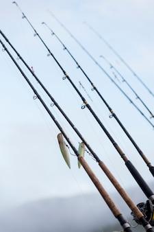 Vista, de, canas de pesca, skeena-queen, charlotte, distrito regional, haida, gwaii, graham, ilha, britânico