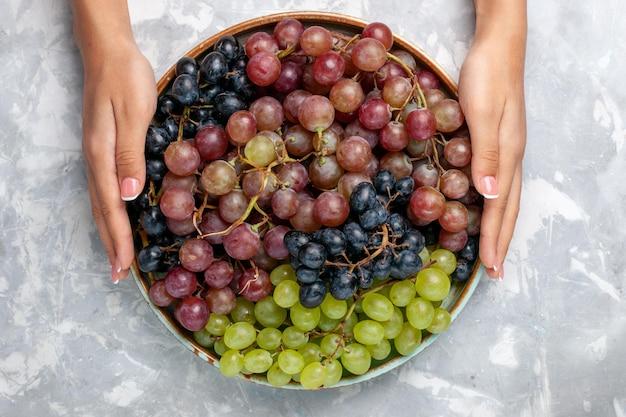 Vista de cima de diferentes uvas suculentas e maduras frutas ácidas na mesa branca clara