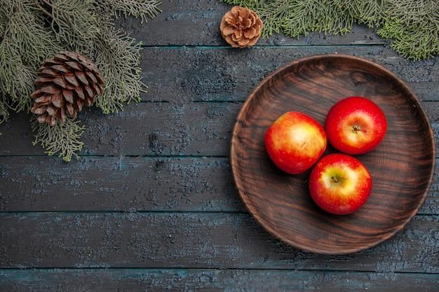 Vista de cima de frutas em uma tigela com três maçãs sob os galhos com cones