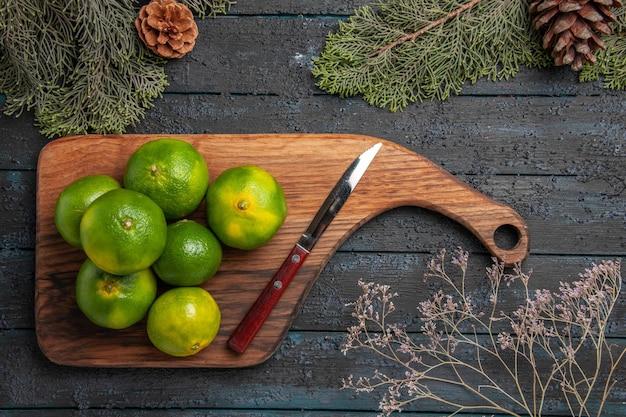 Vista de cima de limas e faca sete limas verdes e faca na tábua de corte ao lado de galhos de árvores e cones