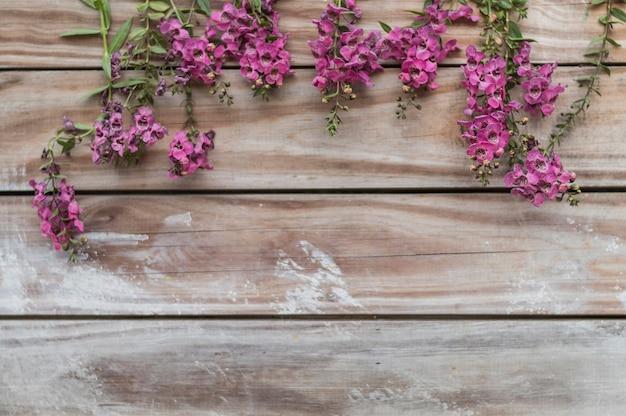 Vista de cima de placas com plantas bonitas