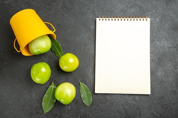 Vista de cima, folhas verdes de tomates, balde amarelo virado e um caderno em fundo escuro