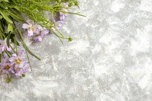 Vista de cima lindas flores no jardim de flores de planta de superfície branca