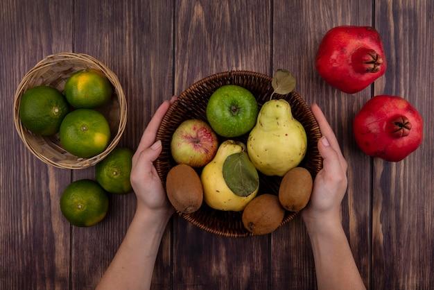 Vista de cima, mulher segurando uma cesta com tangerinas verdes, romãs, pêras, maçãs e kiwi na parede de madeira