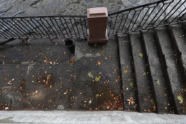 Vista de cima nas folhas no asfalto