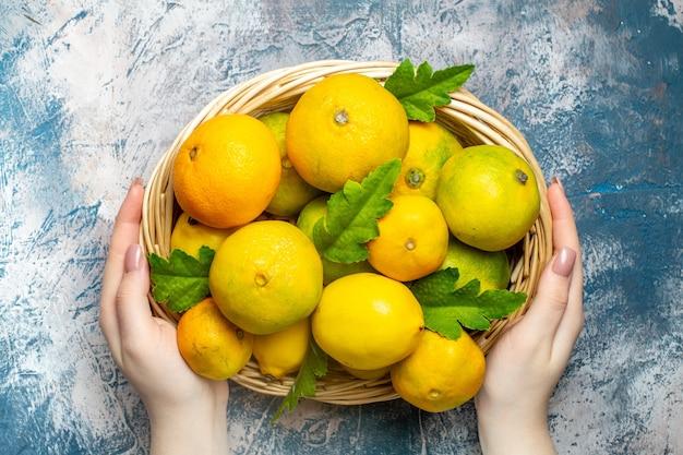 Vista de cima tangerinas frescas na cesta de vime na mão da mulher na superfície azul e branca