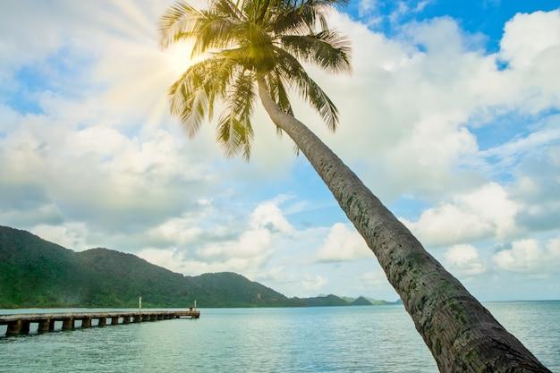 Vista de coqueiros e o mar em koh chang