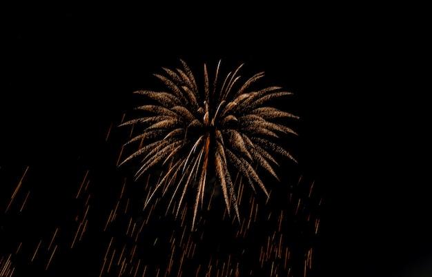 Vista, de, fogos artifício, feriado, ouro, brilhante, faísca, fogos artifício