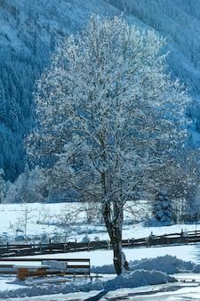 Vista de inverno campestre (áustria, tirol, vila de haselgehr)