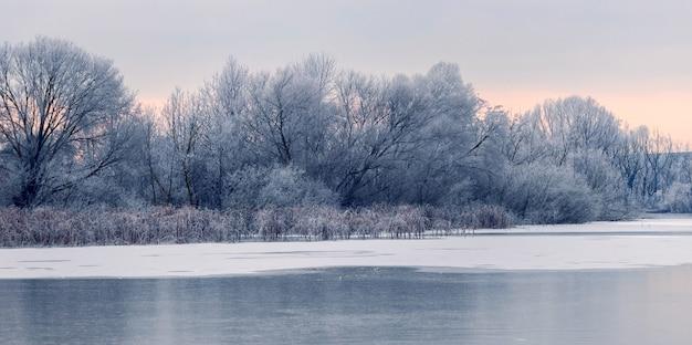 Vista de inverno com árvores cobertas de neve na margem do rio pela manhã durante o nascer do sol