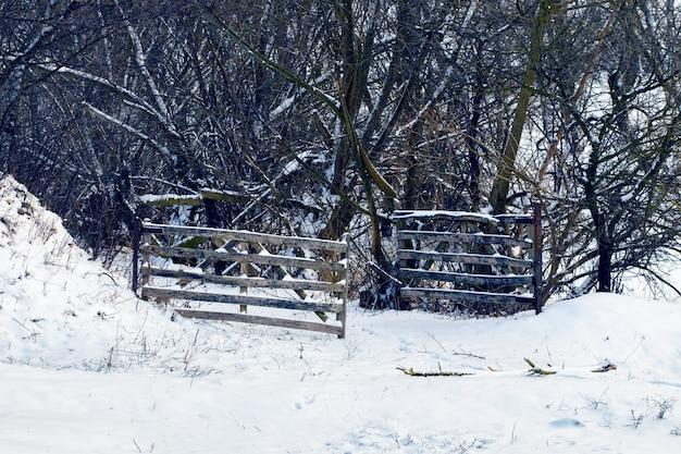 Vista de inverno com portão de madeira aberto perto do jardim com árvores cobertas de neve