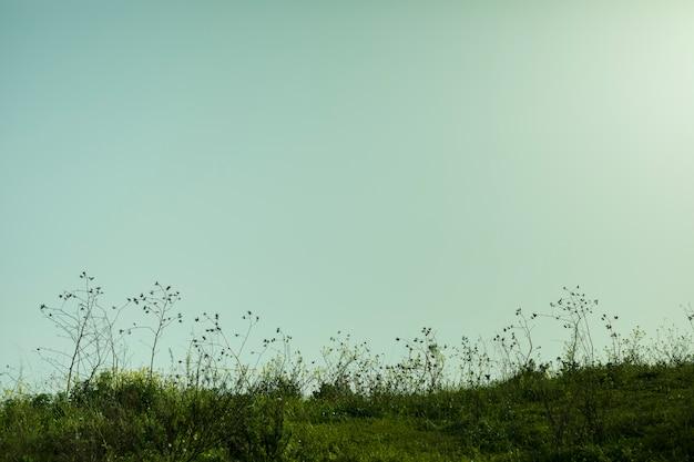 Vista, de, paisagem, durante, pôr do sol