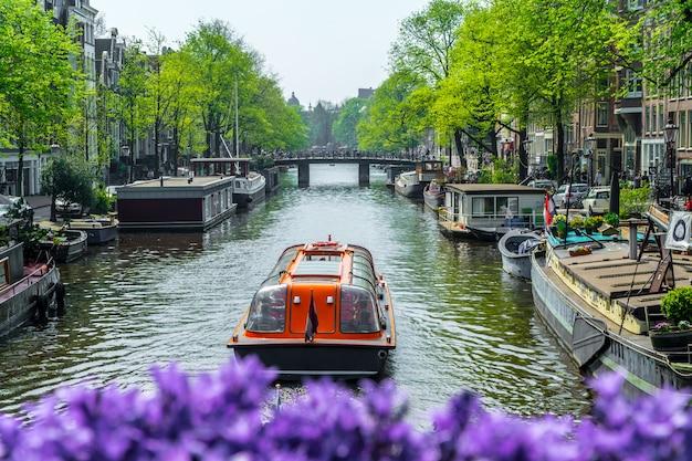 Vista, de, um, canal, em, amsterdão, com, barcos