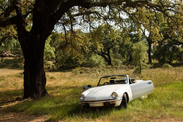 Vista de um carro convertível branco no campo.