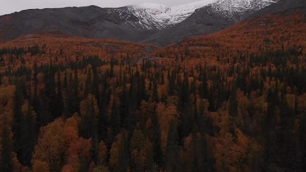 Vista de um drone de uma montanha de neve de baixa altitude no topo