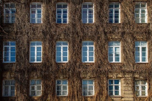 Vista, de, um, parede tijolo, com, janelas