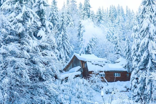 Vista de uma casa de madeira em uma floresta de pinheiros nevados