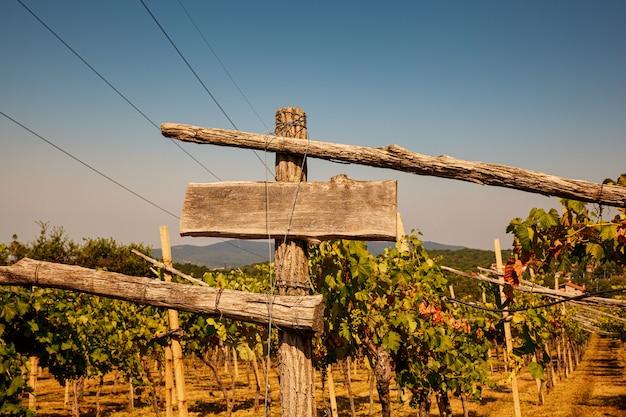Vista de uma cerca com placa de madeira em um vinhedo italiano em trieste karst na temporada de verão