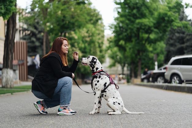 Vista de uma jovem mulher branca brincando e treinando seu cachorro dálmata