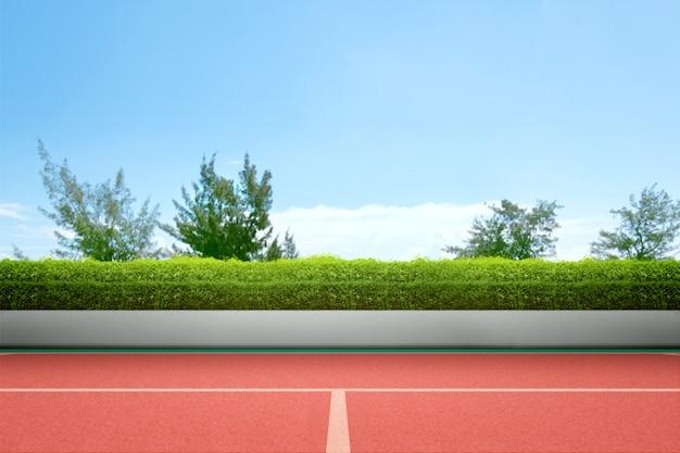 Vista de uma quadra de tênis com grama verde