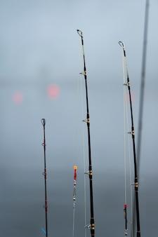 Vista, de, varas pescaria, uma fileira, skeena-queen, charlotte, distrito regional, haida, gwaii, graham, ilha,