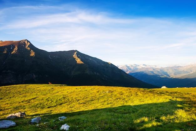 Vista de verão das terras altas nos pirenéus