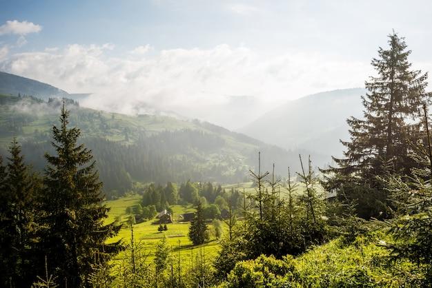 Vista deslumbrante de árvores crescendo em colinas verdes e montanhas em um fundo de nuvens brancas e céu azul em um dia ensolarado de verão quente