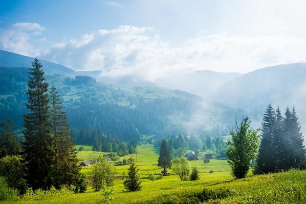 Vista deslumbrante de árvores crescendo em colinas verdes e montanhas