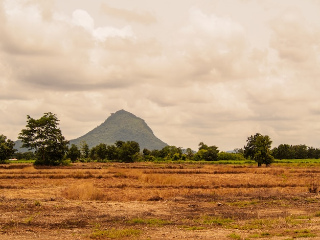 Vista do campo de grama na frente da montanha no céu com nuvem