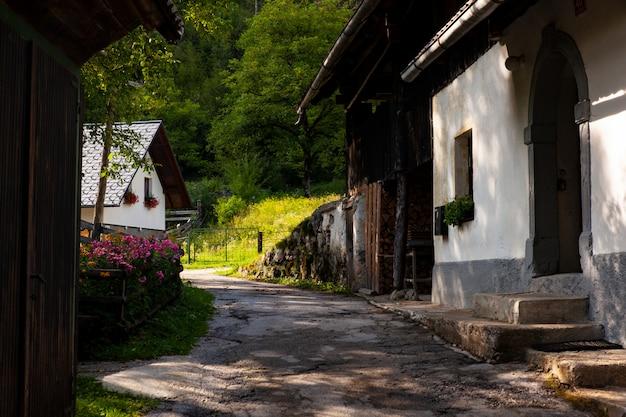 Vista do chalé esloveno em stara fuzina, eslovênia