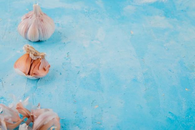 Vista do close-up do bulbo de alho com pele no lado esquerdo e fundo azul com espaço de cópia