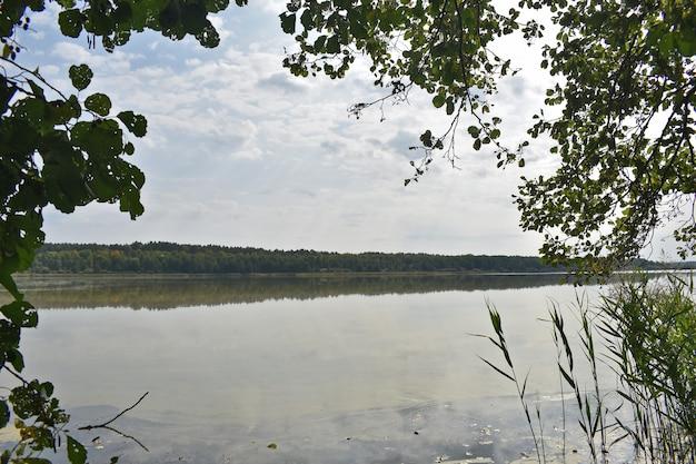 Vista do grande lago da floresta de outono