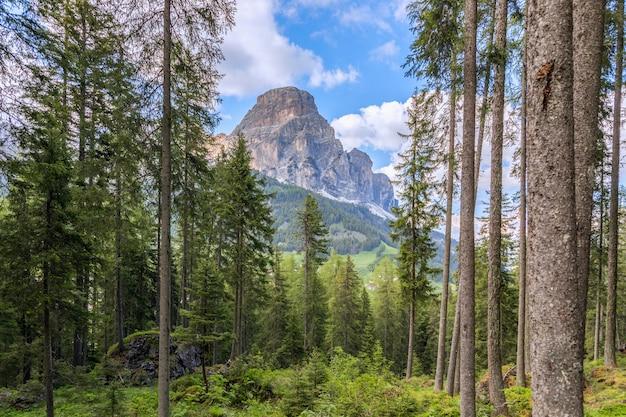 Vista do majestoso pico da montanha sassongher através da floresta de coníferas dos alpes italianos