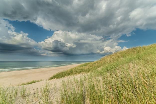 Vista do mar calmo, praia vazia com poucas gramíneas e céu nublado