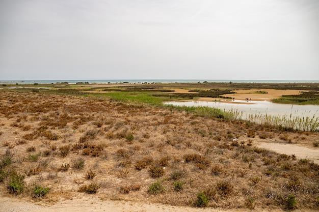 Vista do mirador de la desembocadura, delta del llobreat, el prat, catalunha, espanha