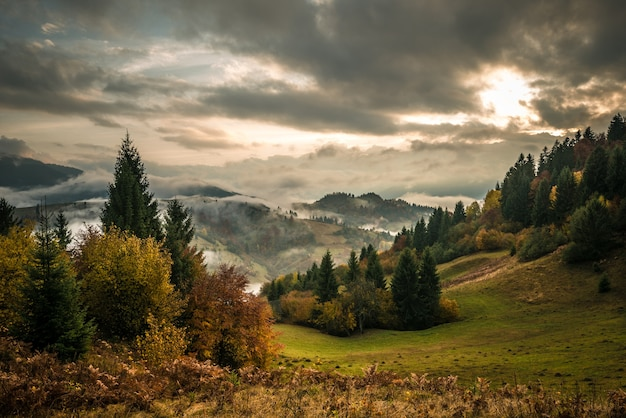 Vista do nascer do sol na floresta da montanha com céu nublado dramático