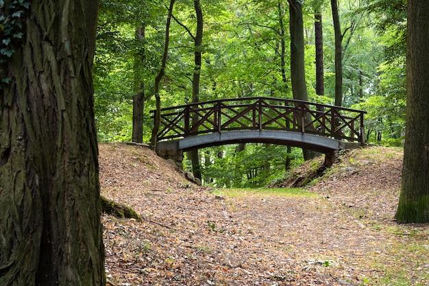 Vista do parque com caminhos ajardinados e uma ponte.