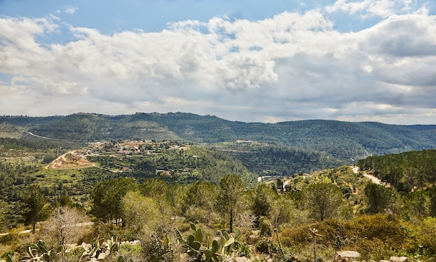 Vista do parque sataf, a oeste de jerusalém, para as montanhas e a floresta.