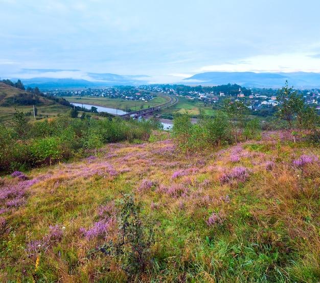Vista do sopé do país da manhã nublada de verão com flores de urze (oblast de lviv, ucrânia).