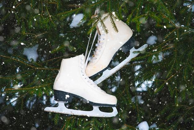 Vista do topo. antigos patins vintage brancos pendurados em uma árvore com neve, humor.