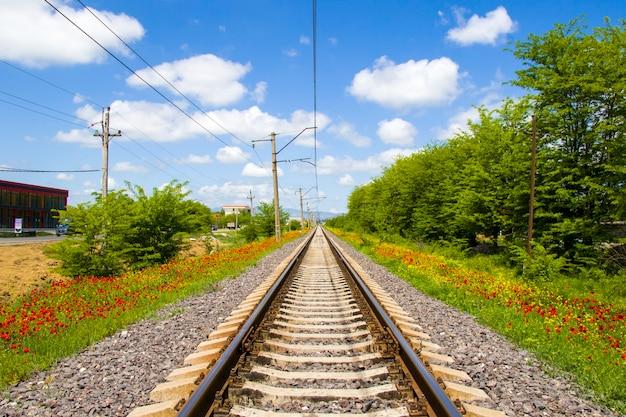 Vista dos trilhos na geórgia, estrada e estação de trem, linhas e horizonte com papoula e campo de flores amarelas