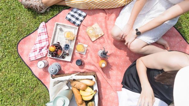 Vista elevada, de, femininas, amigos, sentando, com, alimento, ligado, cobertor piquenique