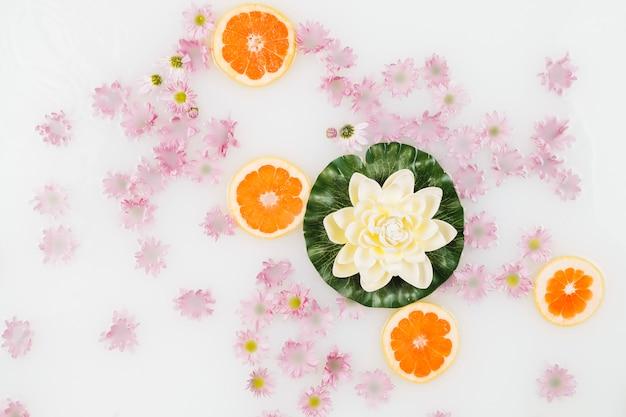 Vista elevada do leite de banho decorado com fatias de toranja, lótus e flores cor de rosa