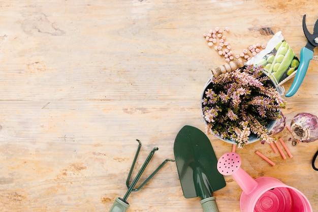Vista elevada do regador; ferramentas de jardinagem; vaso de planta; cebola; sementes; e poda em fundo de madeira